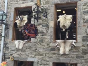 Fur shop on a lovely street