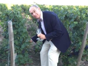 Norm in the vineyard