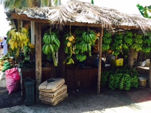 banana and fruit stand