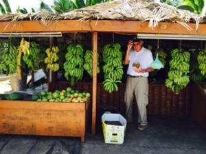 banana place